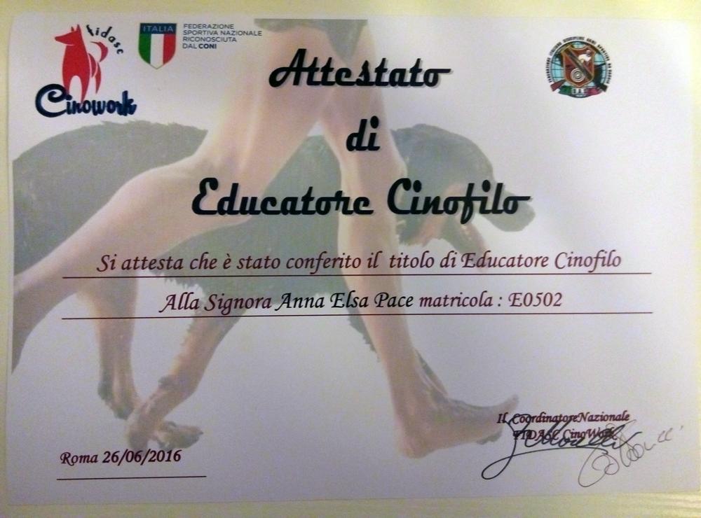 Anna Scuola Majella - Cinowork