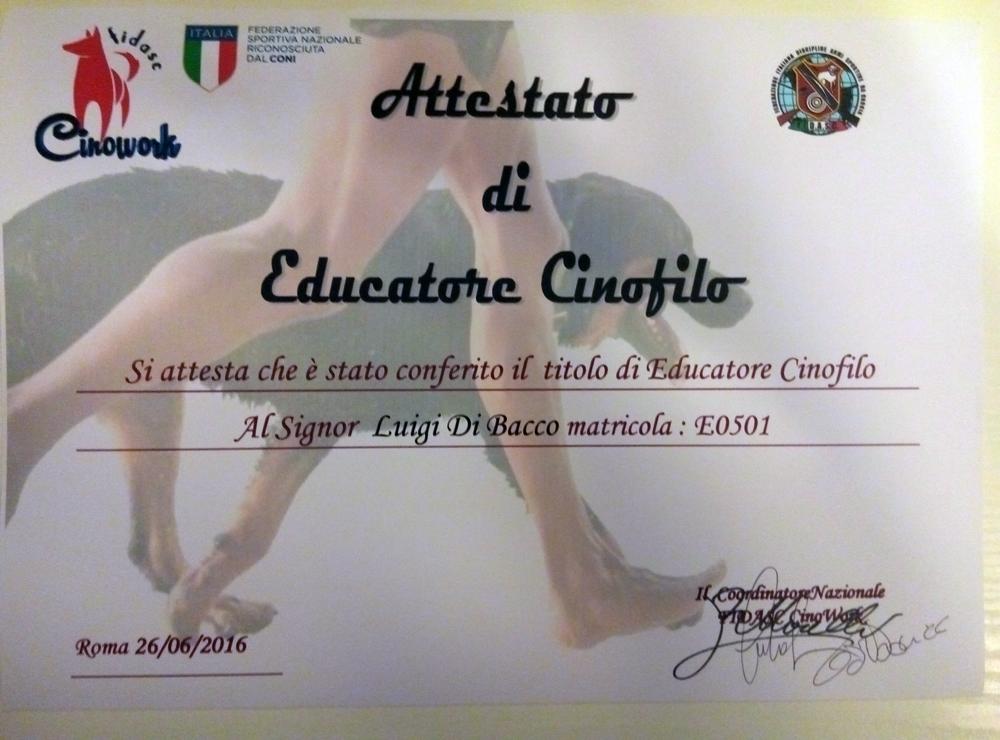Luigi Scuola Majella - Cinowork